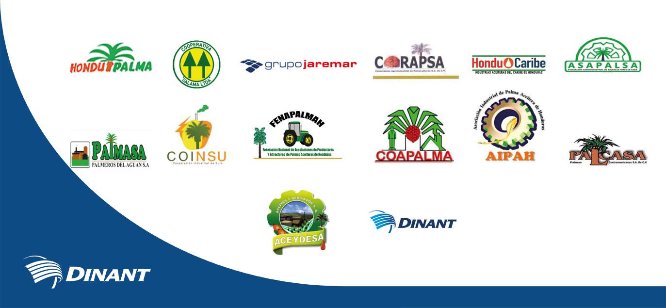 Comunicado Sector Palmicultor